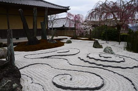 枝垂れ桜の奔龍庭