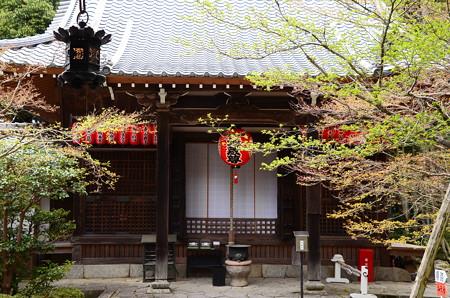青モミジの赤山禅院