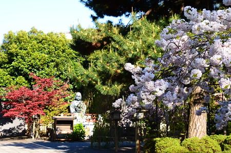 阿亀像の前の松月(ショウゲツ)