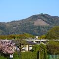 賀茂川の関山と新緑の大文字