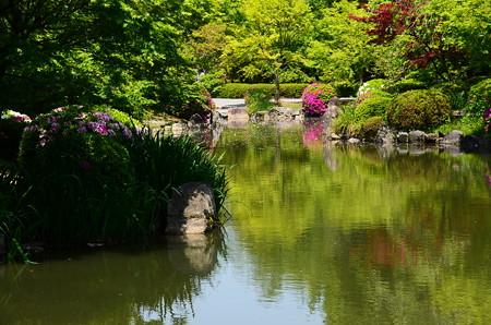 初夏色の瓢箪池