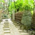 写真: 千光寺・大悲閣入口