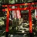 写真: 稲荷社とみかげの滝