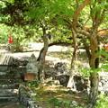 写真: 金光寺の弁財天
