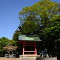 写真: 法華総持院鐘楼脇の普賢象(フゲンゾウ)