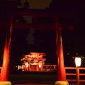 写真: 下鴨神社の夜景