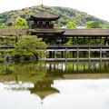 写真: 新緑の中の泰平閣