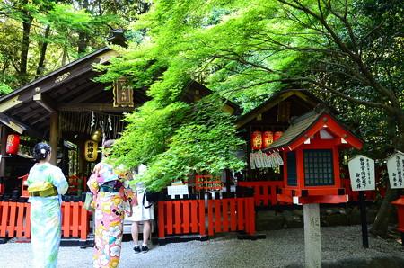 新緑の野宮神社
