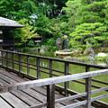 写真: 臨池亭脇から