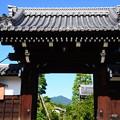写真: 天寧寺額縁門