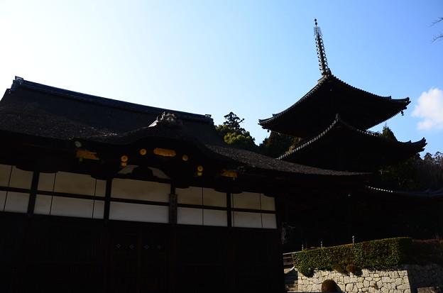 三重塔と灌頂堂