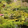 写真: 新緑の聚碧園