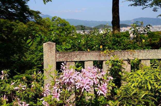 花車(ハナグルマ)と比叡山
