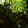 写真: 緑の常寂光寺