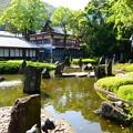 写真: 蓬莱の庭