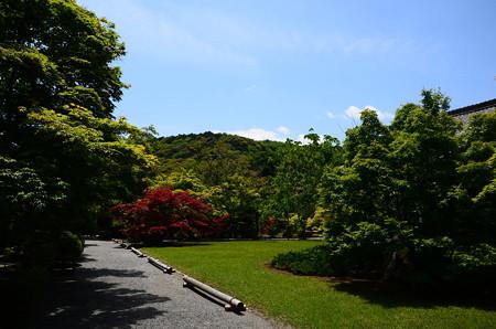 初夏の勧修寺