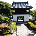 皐月咲く興聖寺