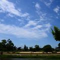 写真: 初夏の空~