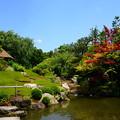 写真: 初夏の余香苑
