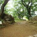 Photos: 武田氏館跡
