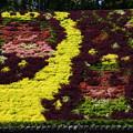 写真: 花と水のタペストリー 「七夕」