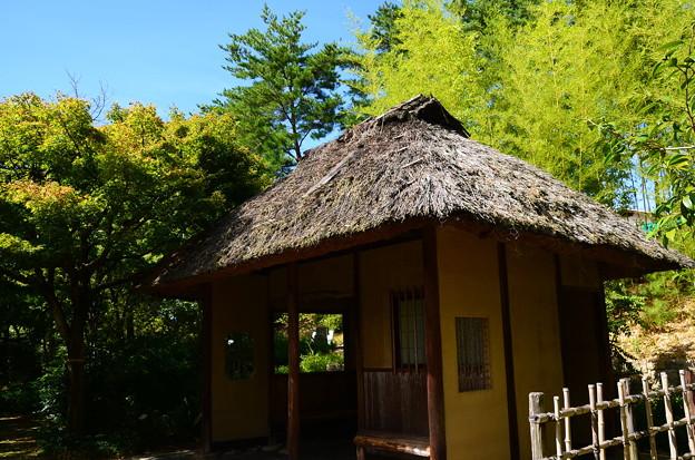 藁葺き屋根と竹