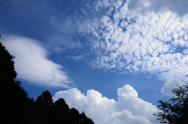 夏の雲 vs 秋の雲