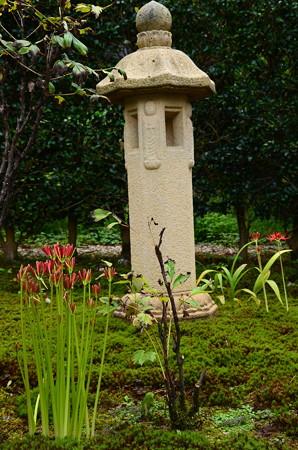 石灯籠と彼岸花