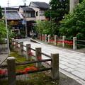 Photos: 門前の彼岸花