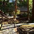 Photos: 法然院にも台風の被害が、、、