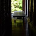 写真: 床緑風に~