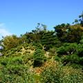 写真: 秋空の下の名勝庭園