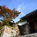 Photos: 三千院の紅葉