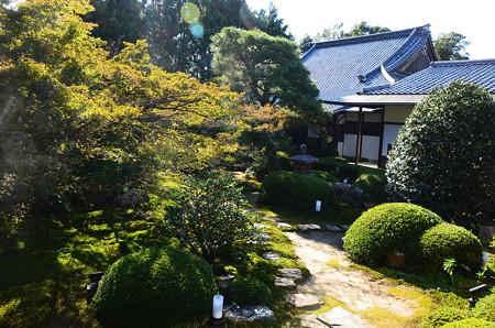 雲龍院庭園