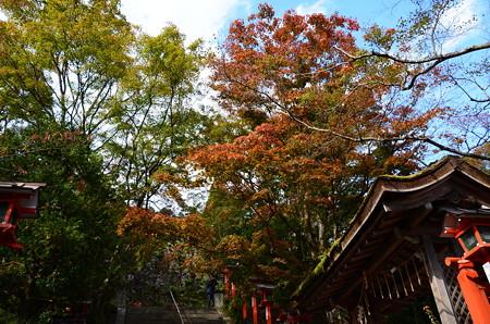 転法輪堂上の紅葉
