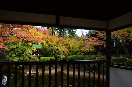 赤崎弁財天を包む紅葉