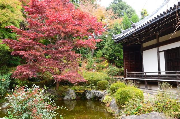 蓮華寿院旧跡庭