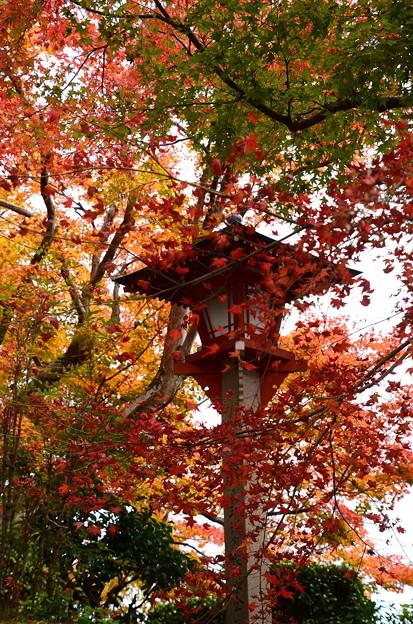 紅葉飾りの灯篭