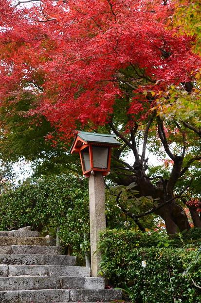 灯篭上の見事な紅葉
