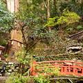 Photos: 双福苑の惨状
