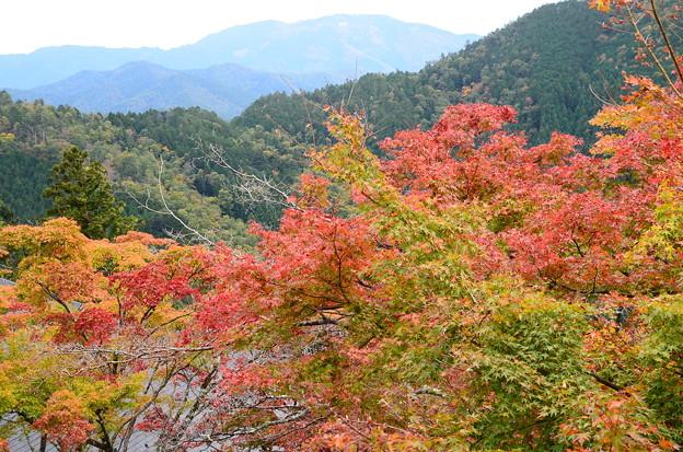 比叡山を望んで