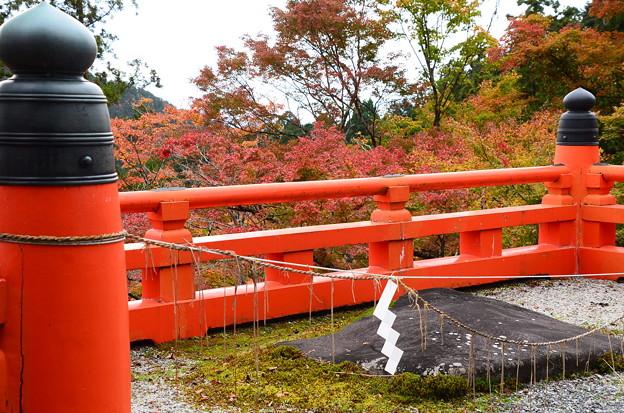 赤い欄干と紅葉