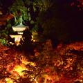 ライトアップの中の多宝塔