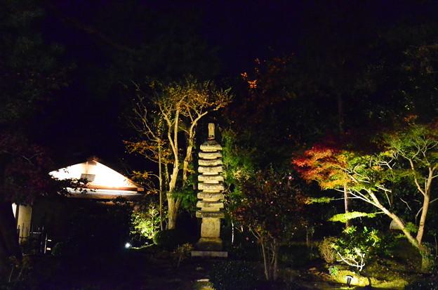 Photos: 順正庭園