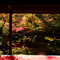 圓光寺・十牛の庭