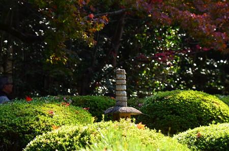 詩仙堂の紅葉風景