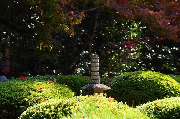 Photos: 詩仙堂の紅葉風景