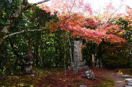 金福寺の紅葉景色