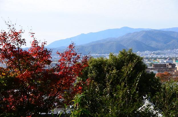 金福寺からの眺望