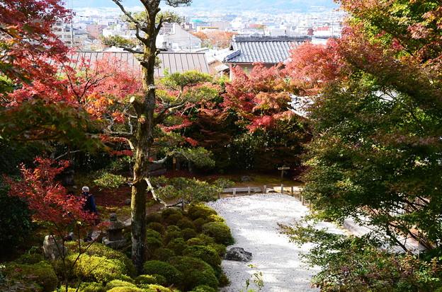 秋の金福寺
